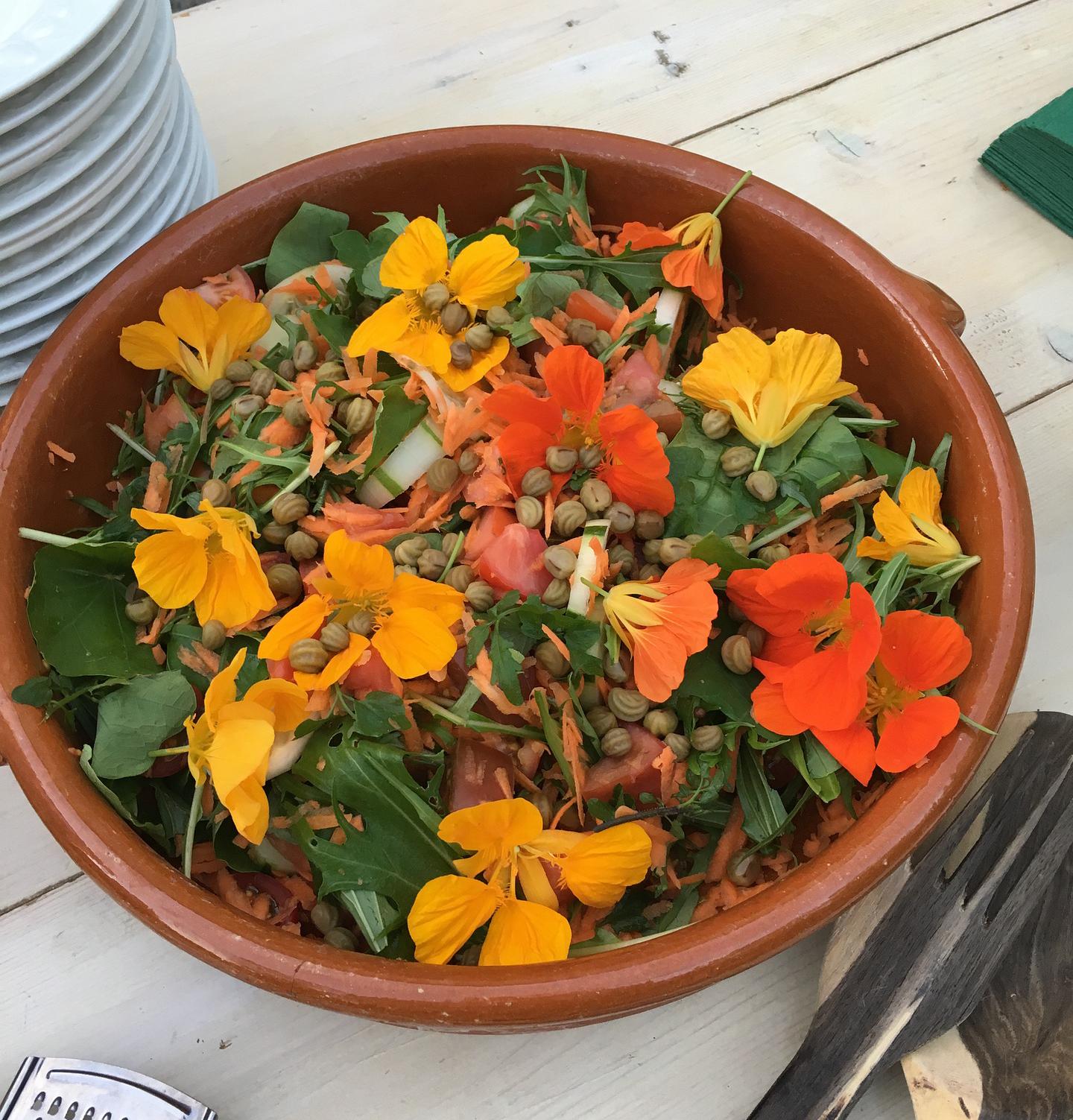 nasturtium salad flowers seeds greens