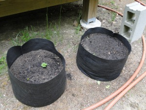 fabric pots