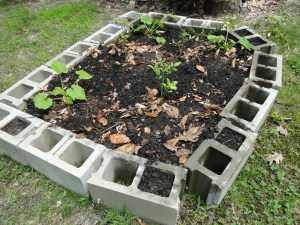 Raised Garden Bed - Getting Ready to Plant