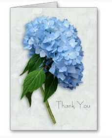 hydrangea wedding cards