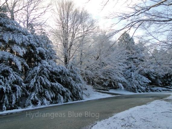 morning april snow road