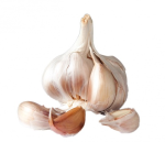hardneck garlic bulb cloves