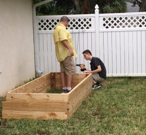 pine wood raised bed