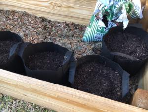 black fabric pots