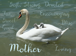 mother swan mothers day