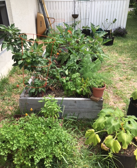 May garden in florida