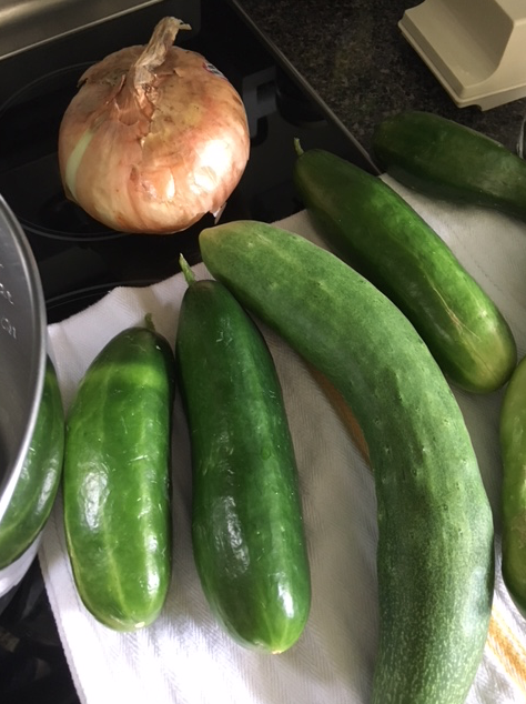 Cucumbers and onion