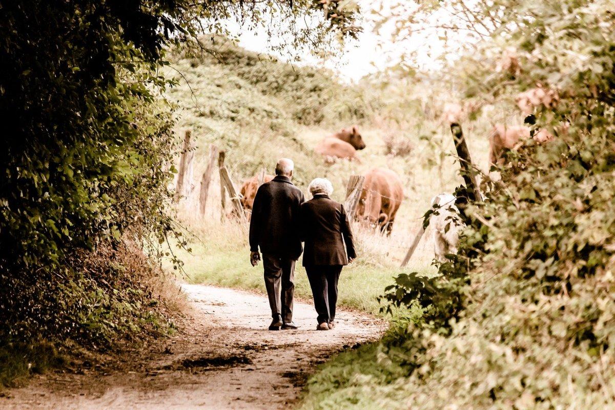 couple, elderly, old, old age, walking, older,